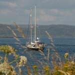 Treshnish Isles, Lunga - Melina