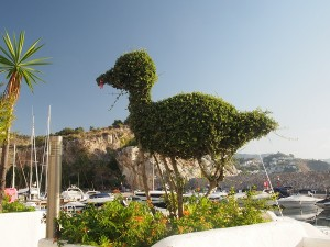 W Horradura, zrobiona z krzaczka poczciwa kaczka dziwaczka